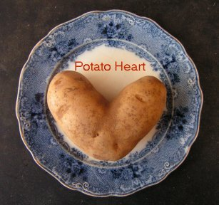 Potato Heart by Fung-Lin Hall