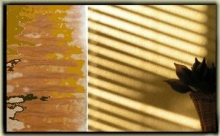 Shadow and Stripe Fung Lin Hall/><br /> (Stop before turning to more Irish green image.)</p> <li></li> <p><iframe width=