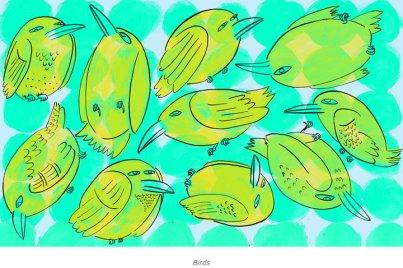 birdsfay