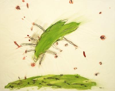 exposic-spero-bug